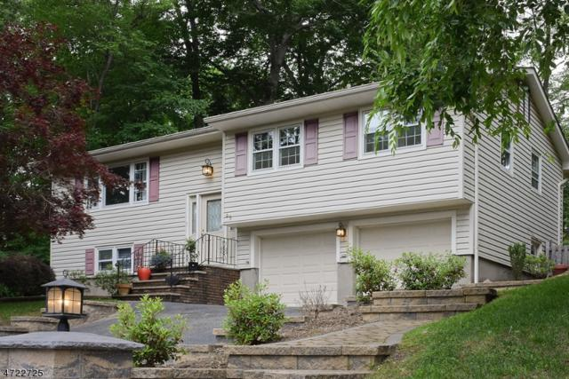 95 Schwarz Blvd, Jefferson Twp., NJ 07849 (MLS #3396077) :: The Dekanski Home Selling Team