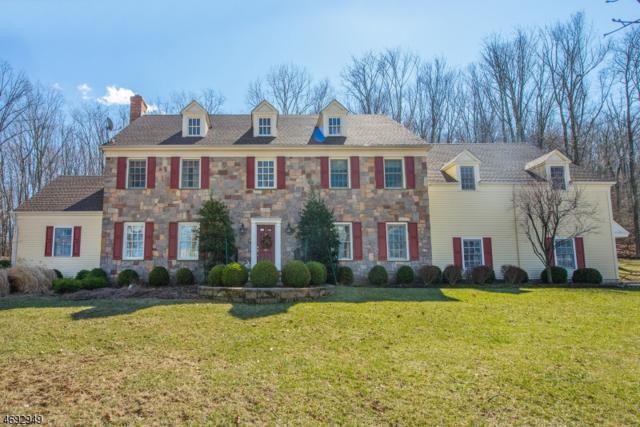 4 Shenandoah Ct, Washington Twp., NJ 07830 (MLS #3396290) :: RE/MAX First Choice Realtors