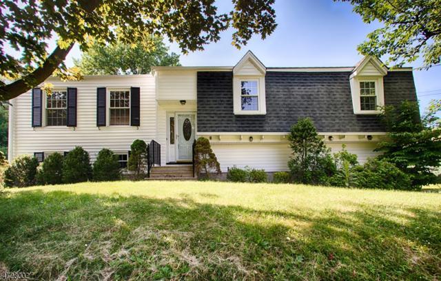 5 Babbitt Rd, Mendham Boro, NJ 07945 (MLS #3396293) :: The Dekanski Home Selling Team