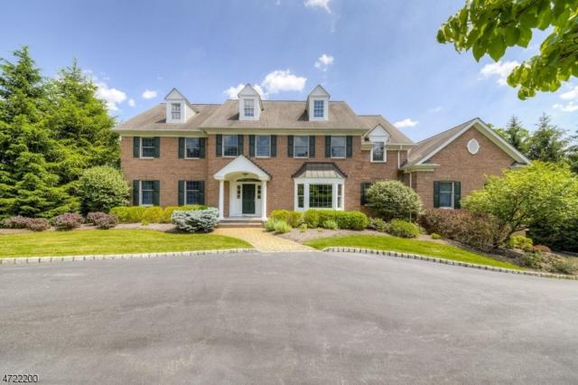 15 Indian Ln, Florham Park Boro, NJ 07932 (MLS #3396374) :: The Dekanski Home Selling Team