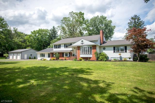 401 Whiton Rd, Branchburg Twp., NJ 08853 (MLS #3397706) :: The Dekanski Home Selling Team