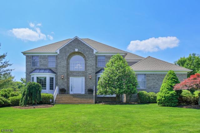 15 Briarwood Dr E, Warren Twp., NJ 07059 (MLS #3398122) :: The Dekanski Home Selling Team