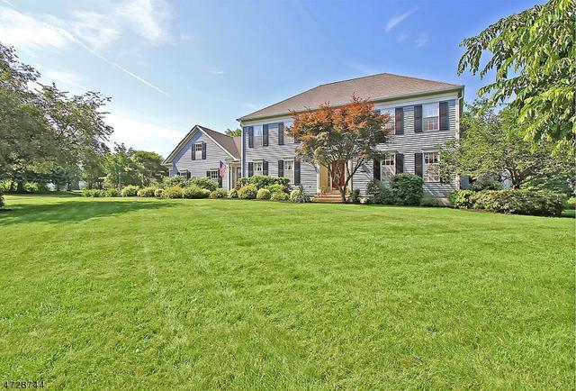 6 Kinney's Sawmill Rd, Readington Twp., NJ 08889 (MLS #3401845) :: The Dekanski Home Selling Team