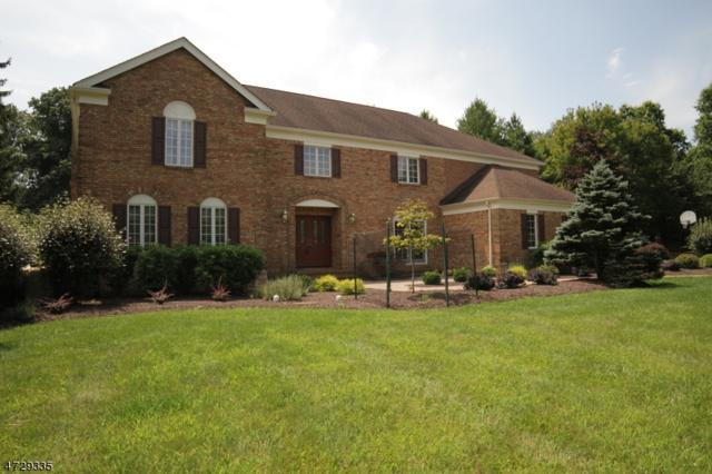 4 Stuart Ct, Washington Twp., NJ 07853 (MLS #3402222) :: The Dekanski Home Selling Team