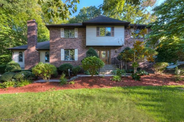 50 Cheshire Ln, Ringwood Boro, NJ 07456 (MLS #3402866) :: The Dekanski Home Selling Team