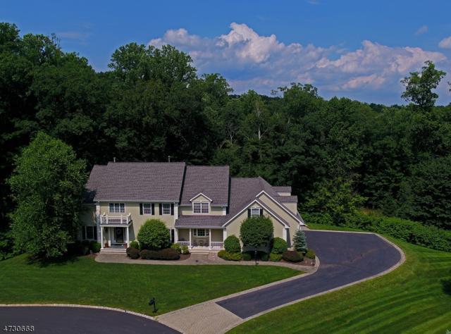5 Rockwell Ct, Mendham Twp., NJ 07945 (MLS #3403430) :: The Dekanski Home Selling Team