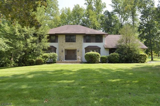 1 Waterloo Dr, Parsippany-Troy Hills Twp., NJ 07950 (MLS #3405371) :: The Dekanski Home Selling Team