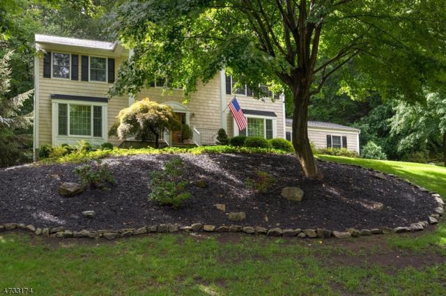 47 Forrest Rd, Randolph Twp., NJ 07869 (MLS #3405725) :: The Dekanski Home Selling Team