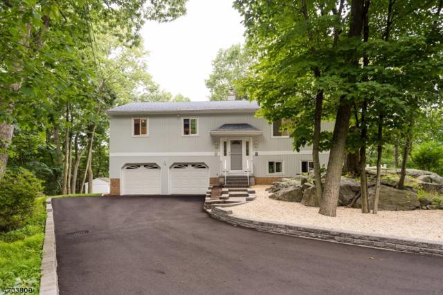 15 Sherwood Forest Dr, Byram Twp., NJ 07821 (MLS #3406311) :: The Dekanski Home Selling Team