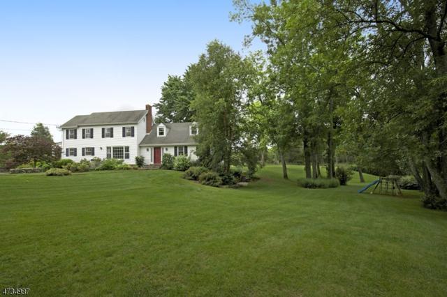 1339 Cowperthwaite Rd, Bedminster Twp., NJ 07921 (MLS #3407743) :: The Dekanski Home Selling Team