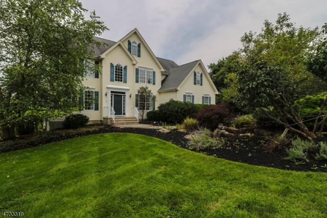 3 Fox Chase Turn, Union Twp., NJ 08867 (MLS #3408324) :: The Dekanski Home Selling Team