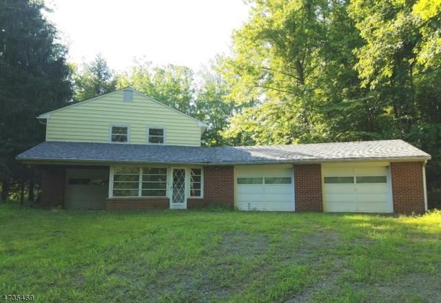 142 Rockaway Rd, Tewksbury Twp., NJ 08833 (MLS #3408384) :: The Dekanski Home Selling Team