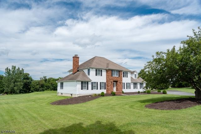12 Deer Run, Washington Twp., NJ 07882 (MLS #3408938) :: The Dekanski Home Selling Team