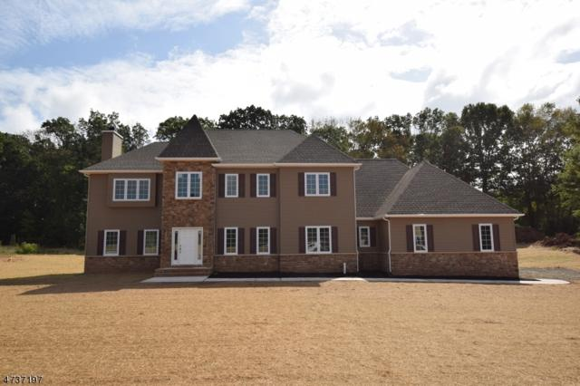 9 Fawn Run Ln, Branchburg Twp., NJ 08876 (MLS #3409498) :: The Dekanski Home Selling Team
