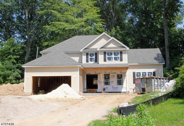 98 Redgate Rd, Parsippany-Troy Hills Twp., NJ 07005 (MLS #3409698) :: The Dekanski Home Selling Team