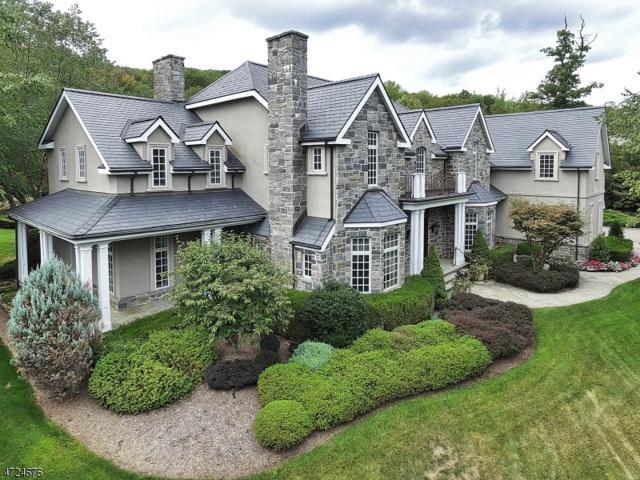 2 Stoney Pond Way, Montville Twp., NJ 07045 (MLS #3410335) :: The Dekanski Home Selling Team