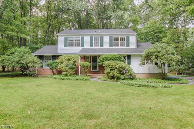 3 Long Ridge Rd, Parsippany-Troy Hills Twp., NJ 07869 (MLS #3410617) :: The Dekanski Home Selling Team