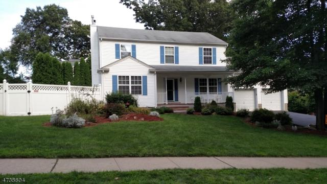 5 Anderson Rd, Wharton Boro, NJ 07885 (MLS #3410828) :: The Dekanski Home Selling Team