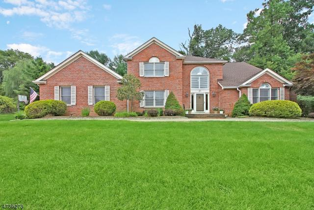 20 Mark Twain Dr, Morris Twp., NJ 07960 (MLS #3411422) :: The Dekanski Home Selling Team