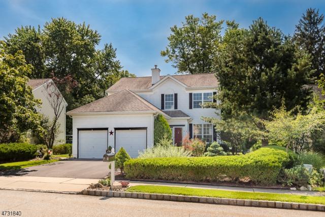 72 Saxton Dr, Hackettstown Town, NJ 07840 (MLS #3412065) :: The Dekanski Home Selling Team