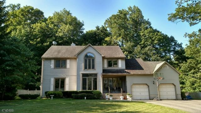 6 Jessica Ct, Jefferson Twp., NJ 07849 (MLS #3412550) :: The Dekanski Home Selling Team