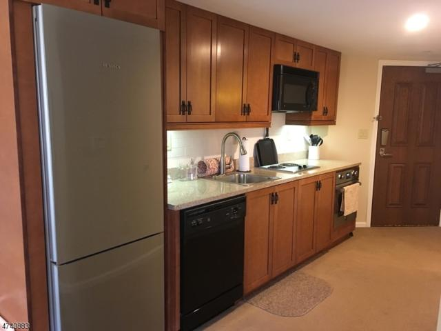 200 State Route 94 Unit 209, Vernon Twp., NJ 07462 (MLS #3412920) :: The Dekanski Home Selling Team