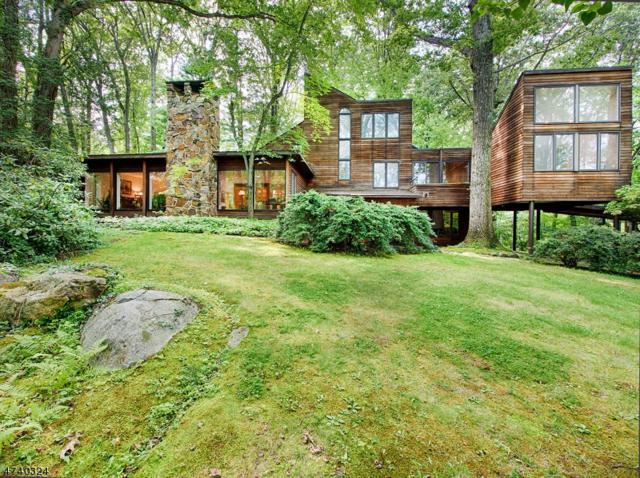 109 Laurel Hill Rd, Mountain Lakes Boro, NJ 07046 (MLS #3412956) :: SR Real Estate Group