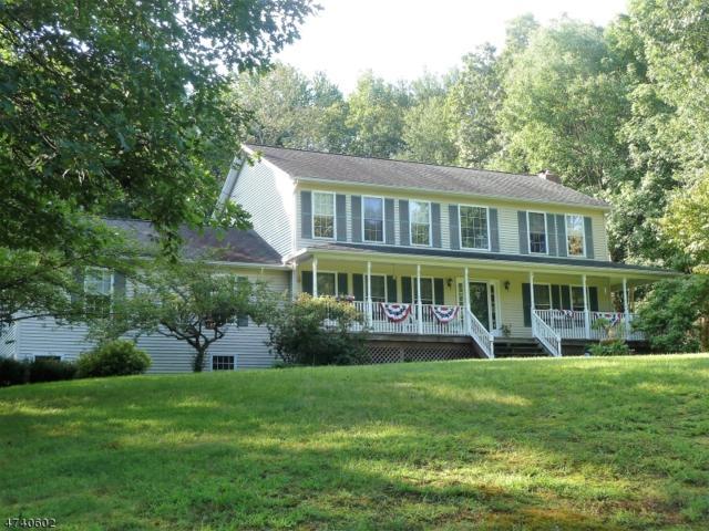 29 Partridge Dr, Blairstown Twp., NJ 07825 (MLS #3413237) :: The Dekanski Home Selling Team