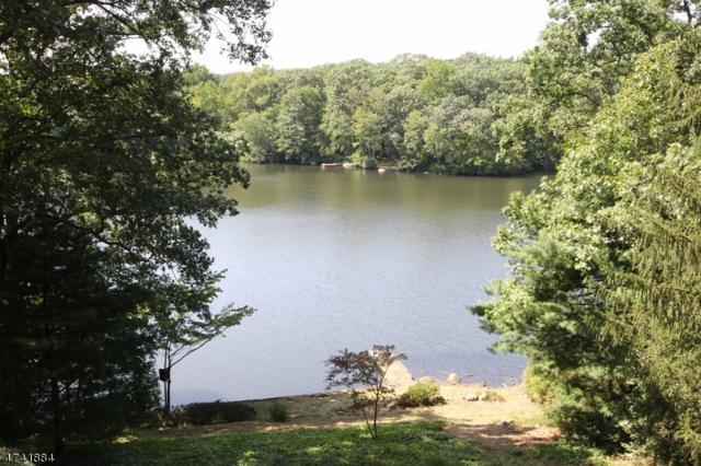 17 Crystal Rd, Mountain Lakes Boro, NJ 07046 (MLS #3413865) :: SR Real Estate Group