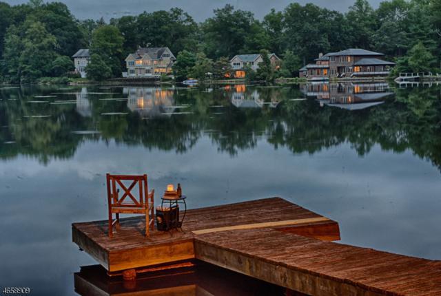 39 N Pocono Rd, Mountain Lakes Boro, NJ 07046 (MLS #3413999) :: The Dekanski Home Selling Team