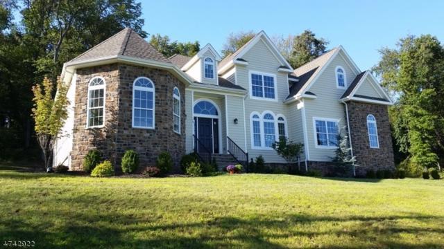 18 Glacier Way, Union Twp., NJ 08867 (MLS #3414701) :: The Dekanski Home Selling Team