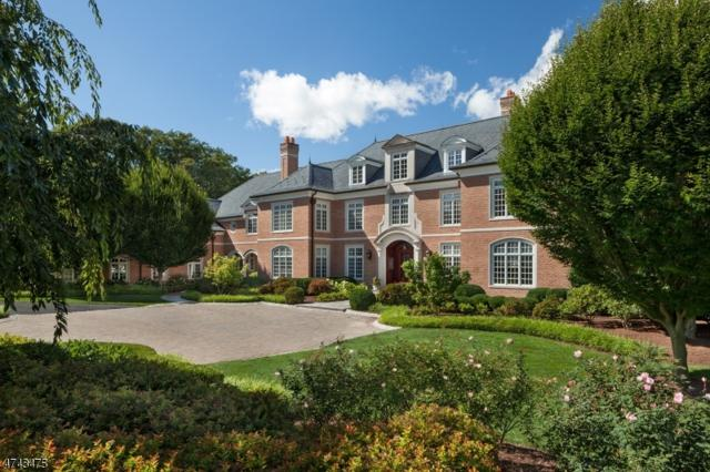 141 Mountain Top Rd, Bernardsville Boro, NJ 07924 (MLS #3415240) :: The Dekanski Home Selling Team