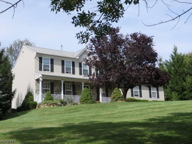 1 Crest Ln, Glen Gardner Boro, NJ 08826 (MLS #3415572) :: The Dekanski Home Selling Team
