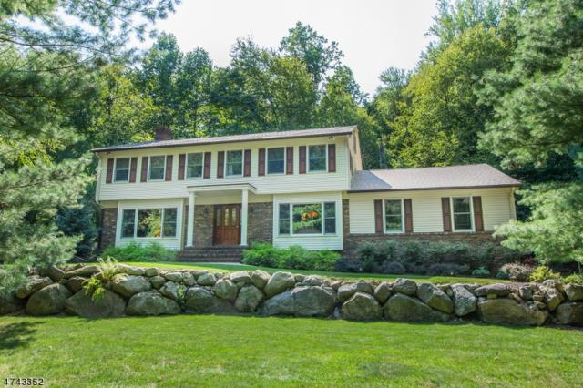 44 Rockledge Rd, Montville Twp., NJ 07045 (MLS #3415595) :: The Dekanski Home Selling Team
