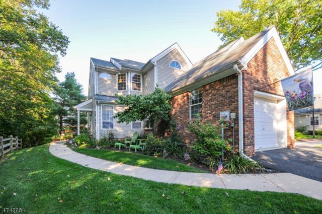 107 Blue Flag Ct, Readington Twp., NJ 08889 (MLS #3415655) :: The Dekanski Home Selling Team
