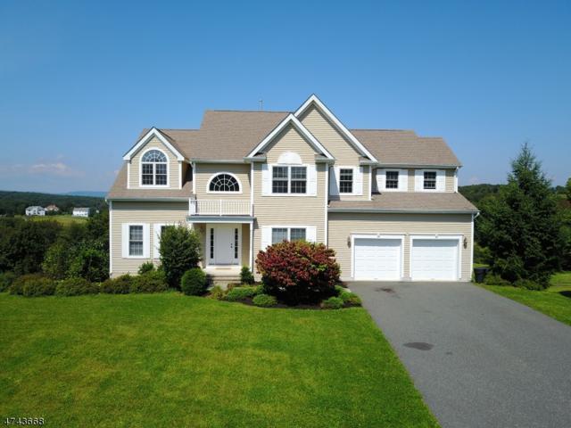 9 Spyglass Hill, Fredon Twp., NJ 07860 (MLS #3415830) :: The Dekanski Home Selling Team