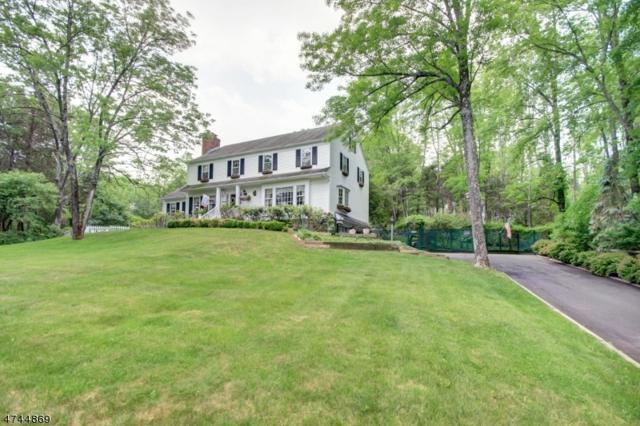 1 Cedar Pl, Peapack Gladstone Boro, NJ 07934 (MLS #3416535) :: The Dekanski Home Selling Team