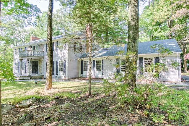 2 Black Oak Ln, Kinnelon Boro, NJ 07405 (MLS #3416797) :: The Dekanski Home Selling Team