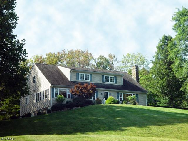 2 Smithfield Rd, Clinton Twp., NJ 08833 (MLS #3417567) :: The Dekanski Home Selling Team
