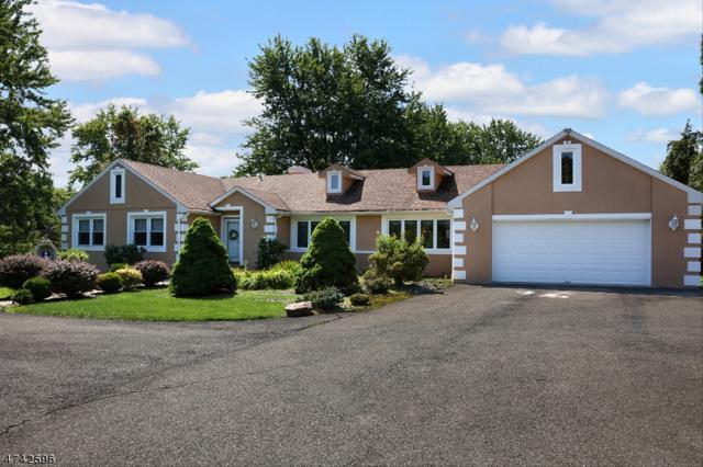 6 Wren Ln, Readington Twp., NJ 08853 (MLS #3418328) :: The Sue Adler Team