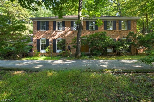22 Cherry Tree Ln, Kinnelon Boro, NJ 07405 (MLS #3419707) :: The Dekanski Home Selling Team