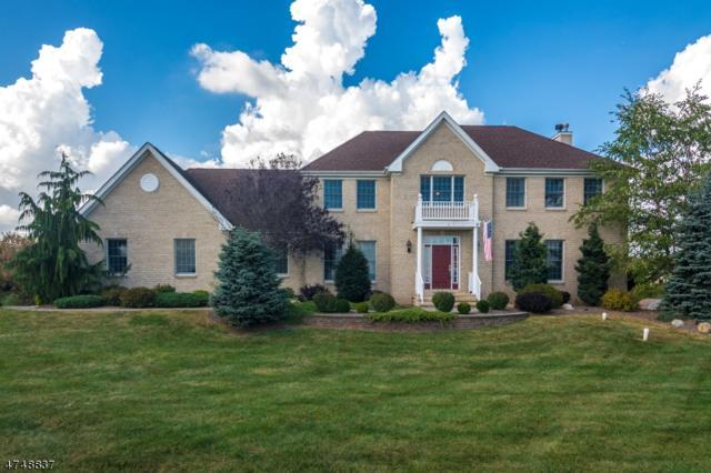 4 Ridgeview Ct, Raritan Twp., NJ 08551 (MLS #3420494) :: The Dekanski Home Selling Team
