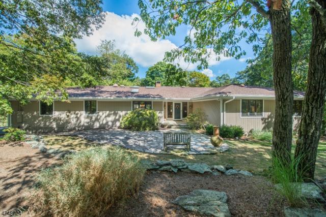 45 Brush Hill Rd, Kinnelon Boro, NJ 07405 (MLS #3420499) :: The Dekanski Home Selling Team