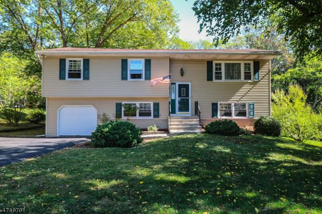 36 Marudy Dr, Clinton Town, NJ 08809 (MLS #3421271) :: The Dekanski Home Selling Team