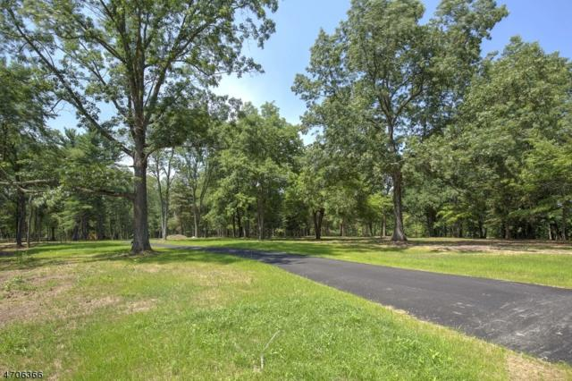 10 Twin Oaks Ln, Harding Twp., NJ 07976 (MLS #3421297) :: William Raveis Baer & McIntosh