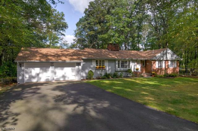 4 Puddingstone Rd, Parsippany-Troy Hills Twp., NJ 07950 (MLS #3421875) :: The Dekanski Home Selling Team