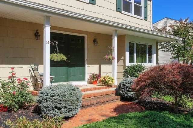 14 Brookside Rd, Roxbury Twp., NJ 07876 (MLS #3421889) :: The Dekanski Home Selling Team