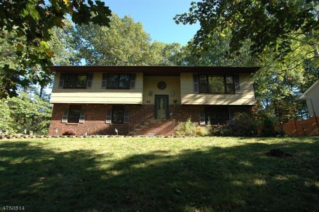 42 Horizon Dr, Roxbury Twp., NJ 07876 (MLS #3422115) :: The Dekanski Home Selling Team