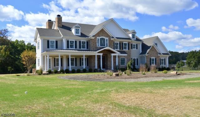 224 Mountain Rd, Bernards Twp., NJ 07920 (MLS #3422158) :: The Dekanski Home Selling Team
