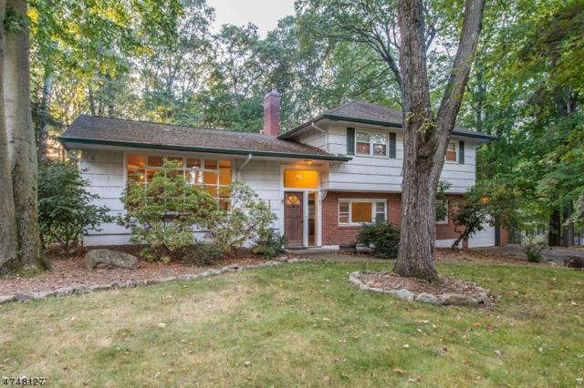47 Lake Shore Dr S, Randolph Twp., NJ 07869 (MLS #3422809) :: The Dekanski Home Selling Team